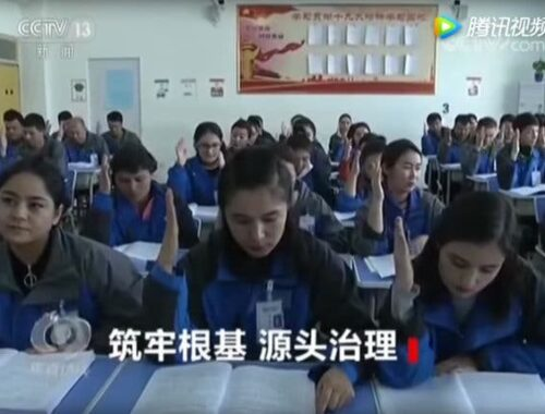 the nytime Xinjiang